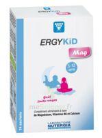 Ergykid Mag Poudre Solution Buvable 14 Sachets à BOURG-SAINT-MAURICE