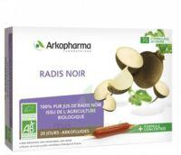 Arkofluide Bio Ultraextract Radis Noir Solution Buvable 20 Ampoules/10ml à BOURG-SAINT-MAURICE