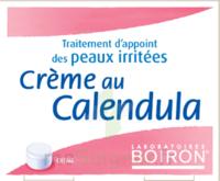 Boiron Crème Au Calendula Crème à BOURG-SAINT-MAURICE