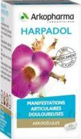 Arkogelules Harpagophyton Gélules Fl/150 à BOURG-SAINT-MAURICE