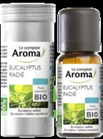 Huile Essentielle Bio Eucalyptus Radié à BOURG-SAINT-MAURICE