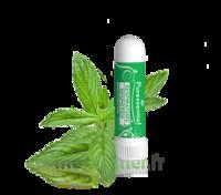 Puressentiel Respiratoire Inhaleur Respiratoire Aux 19 Huiles Essentielles - 1 Ml à BOURG-SAINT-MAURICE