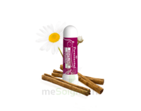Puressentiel Minceur Inhaleur Coupe Faim Aux 5 Huiles Essentielles - 1 Ml à BOURG-SAINT-MAURICE