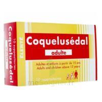 Coquelusedal Adultes, Suppositoire à BOURG-SAINT-MAURICE