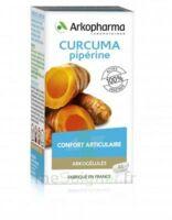 Arkogelules Curcuma Pipérine Gélules Fl/45 à BOURG-SAINT-MAURICE