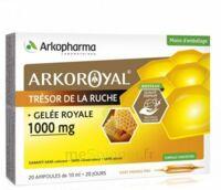 Arkoroyal Gelée Royale 1000 Mg Solution Buvable 20 Ampoules/10ml à BOURG-SAINT-MAURICE