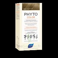 Phytocolor Kit Coloration Permanente 8.3 Blond Clair Doré à BOURG-SAINT-MAURICE