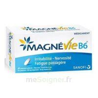 Magnevie B6 100 Mg/10 Mg Comprimés Pelliculés Plaq/60 à BOURG-SAINT-MAURICE