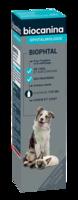 Biophtal Solution Externe 125ml à BOURG-SAINT-MAURICE