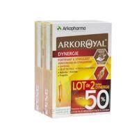 Arkoroyal Dynergie Ginseng Gelée Royale Propolis Solution Buvable 2b/20 Ampoules/10ml à BOURG-SAINT-MAURICE