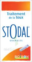 Boiron Stodal Granules Tubes/2 à BOURG-SAINT-MAURICE