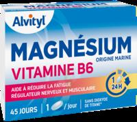 Govital Magnésium Vitamine B6 Comprimés B/45 à BOURG-SAINT-MAURICE